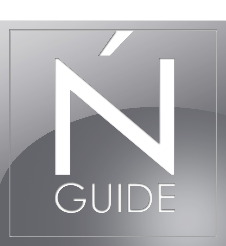 N´GUIDE Networks Domainhandel